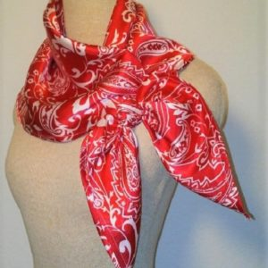 Large Nautical Square - Red and White Paisley